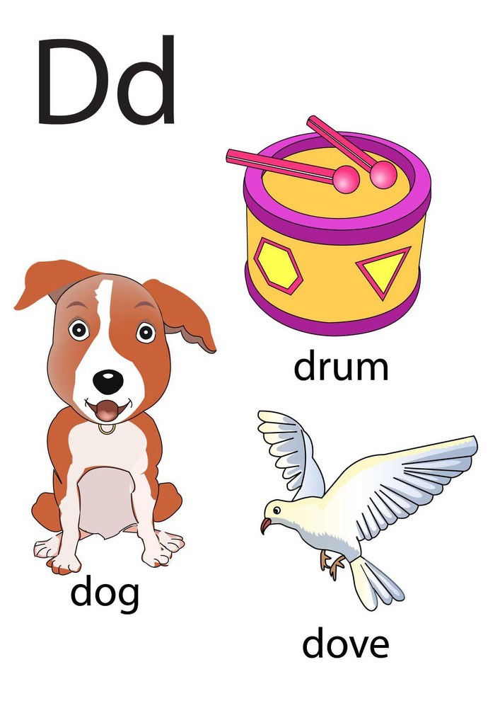 Fun Words That Start With The Letter D