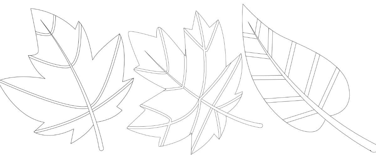 Jesień: liście – kolorowanka 1