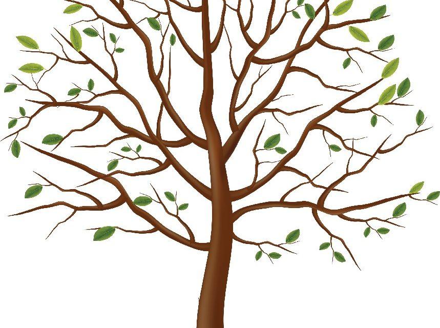 Dzień Drzewa – Dekoracje 3