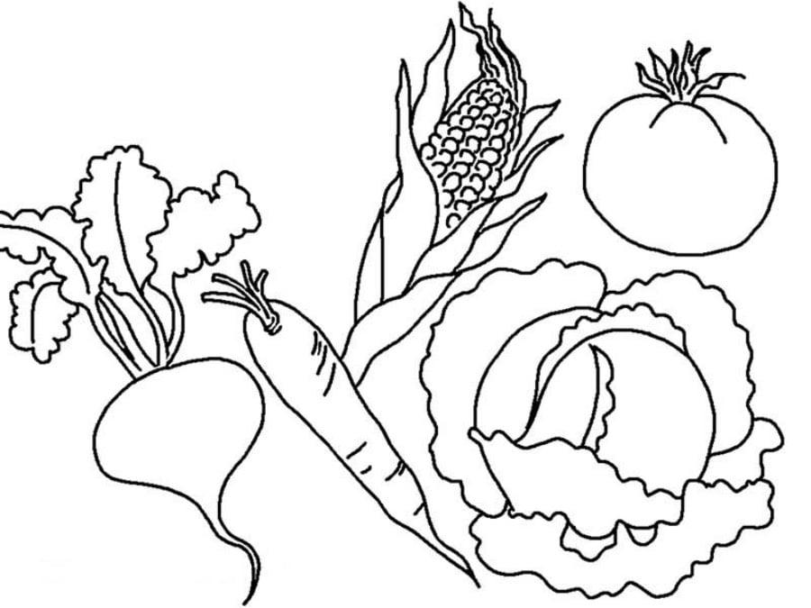 jesie warzywa kolorowanki 1 jesienne malowanki dla dzieci do druku