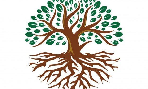 Drzewo Wiary