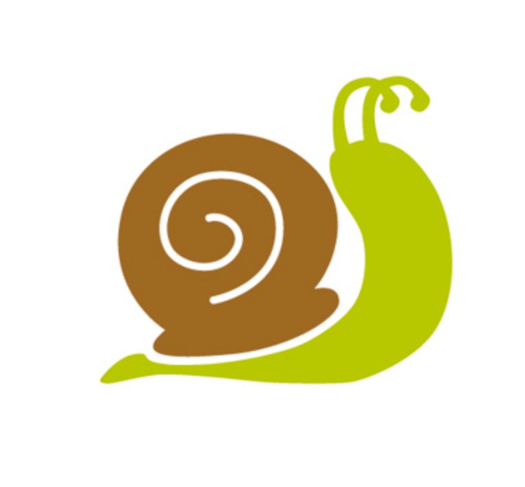Zagadki na łące - ślimak Agata Dziechciarczyk Wierszyki Zagadki