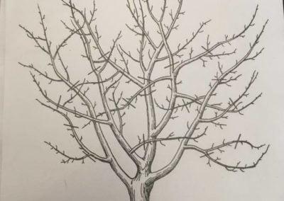 Jesienne drzewo Jesień Jesień Kreatywnie z dzieckiem Patrycja Sulej Pomoce dydaktyczne Prace plastyczne