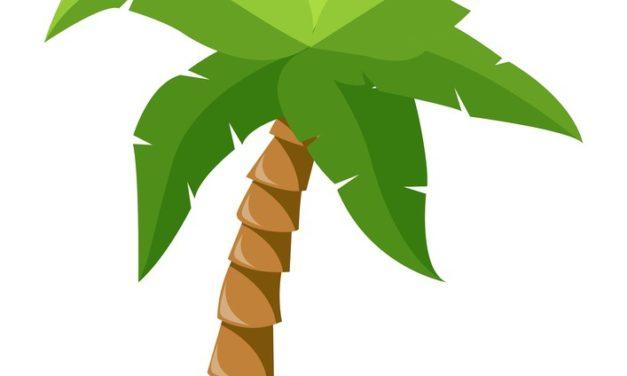 Dekoracje: palmy (10 szablonów)