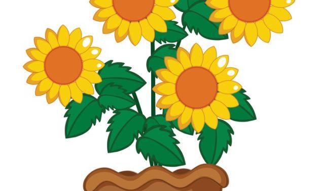 Dekoracje: Słoneczniki (10 szablonów)