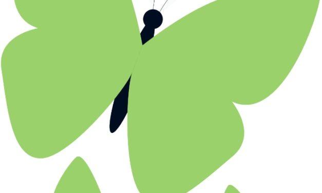 Dekoracje: motyle (10 szablonów)