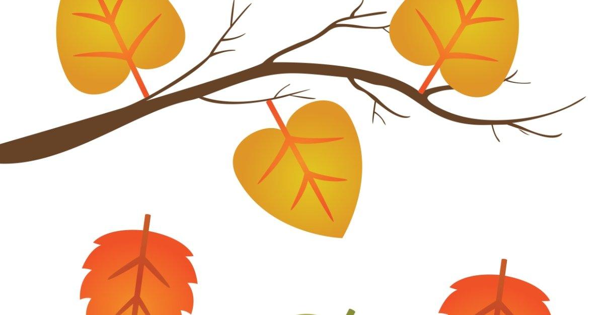 Jesień: Nauka liczenia 0-10 (10 kart pracy)
