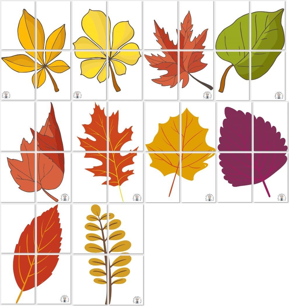 Dekoracje XXL: Liście (10 szablonów) Dekoracje Dekoracje (Jesień)