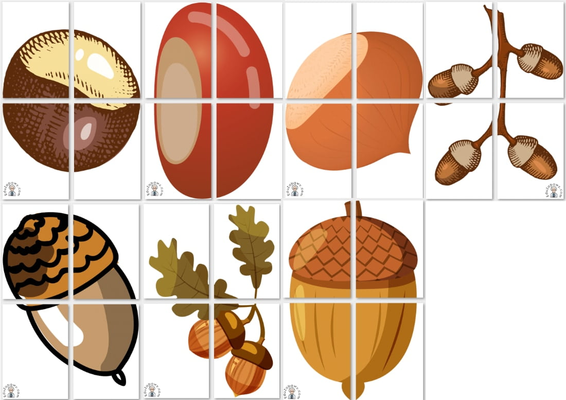 Dekoracje XXL: Kasztany i żołędzie (7 szablonów) Dekoracje Dekoracje (Jesień)