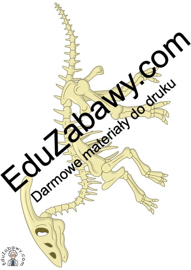 Dekoracje: Szkielet Dinozaura (10 szablonów) Dekoracje Dekoracje (Dzień Dinozaura) Dzień Dinozaura