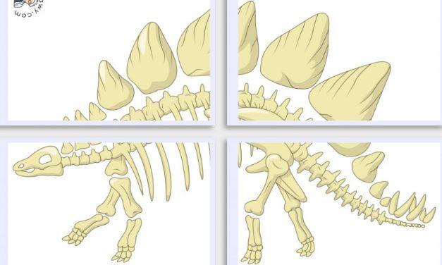 Dekoracje XXL: Szkielet Dinozaura (10 szablonów)