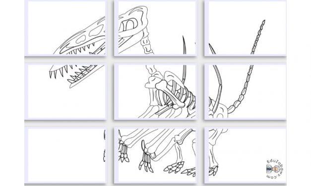 Kolorowanki XXL: Szkielet Dinozaura (10 szablonów)